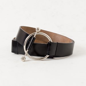 Adjustable Ring and Rod Belt