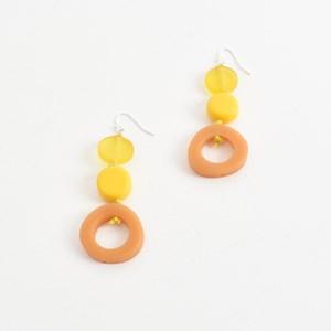 Resin Mix Shape Earrings