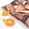 Viva Raffia Beaded Top Earrings - pr_73654