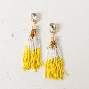 Chain & Tiny Bead Tassel Earrings
