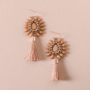 Mini Saanvi Jewel Teardrop & Tassel Earring