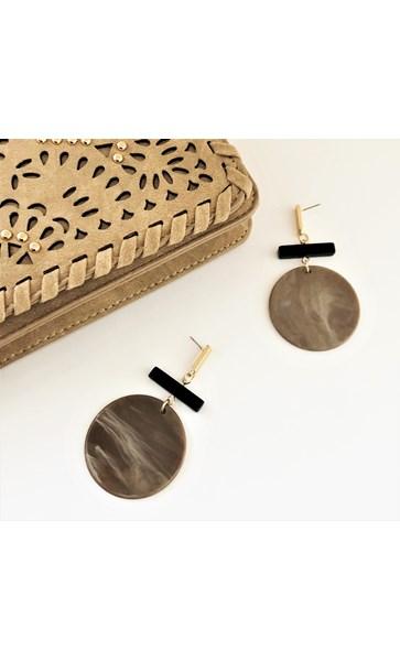 Resin Large Disc Rod Earrings