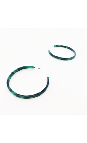 Fine Resin Everyday Hoop Earrings