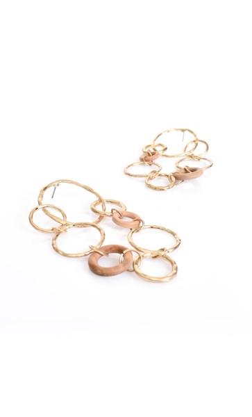 Ring Link Drop Earrings