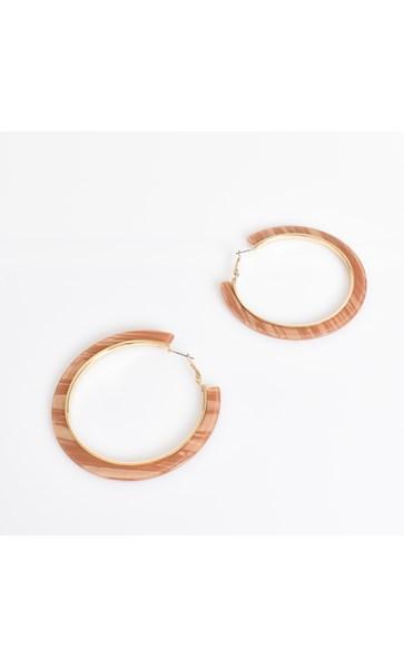 Joanna Metal Lined Resin Earrings