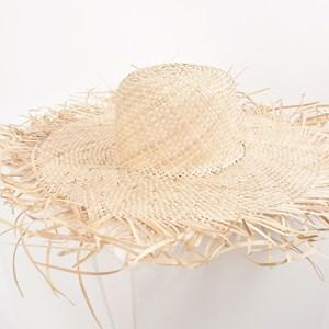Straw Fringe Wide Brim Hat