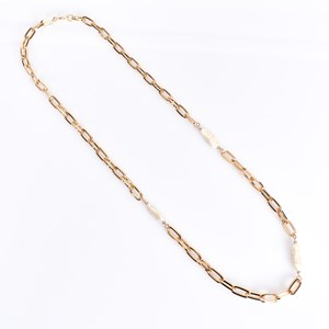 Chain Link and Long Pearl Long Necklace