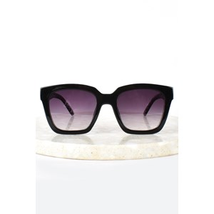 7670B Paris Print Arm Sunglasses