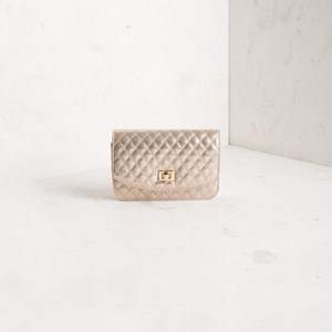 Metallic Quilted Small Clutch