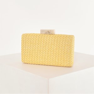 Ladder Weave Resin Clasp Structured Clutch