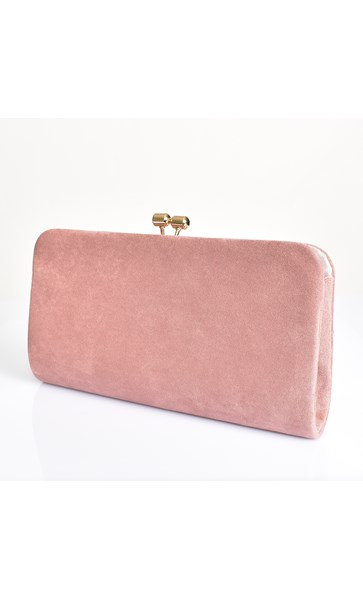 Framed Clip Top Rectangle Clutch